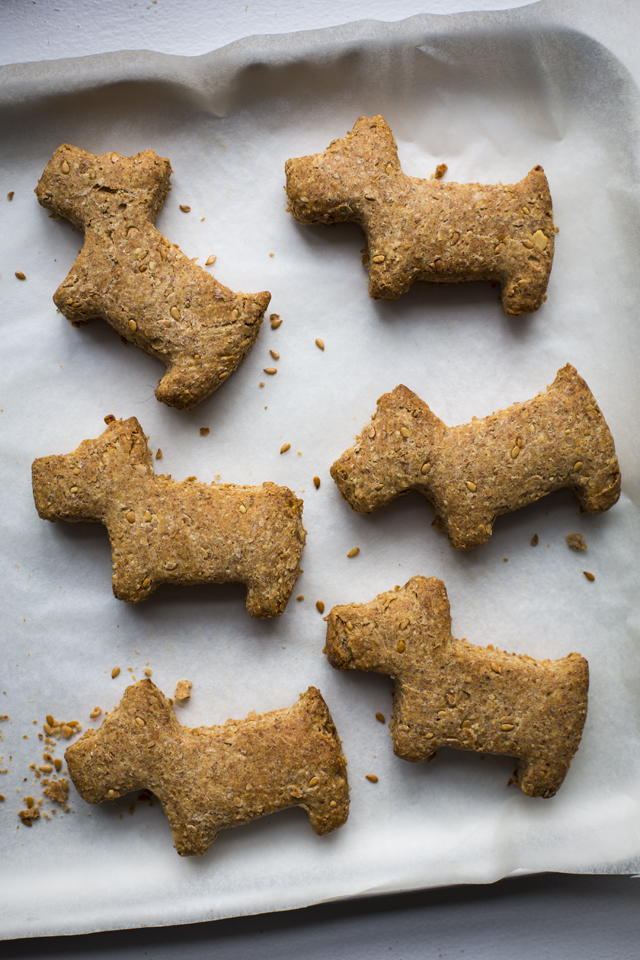 Dog Biscuits | DonalSkehan.com, Because a man's best friend deserves a treat too!