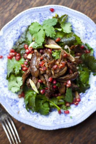 Duck Pomegranate and Mint Salad