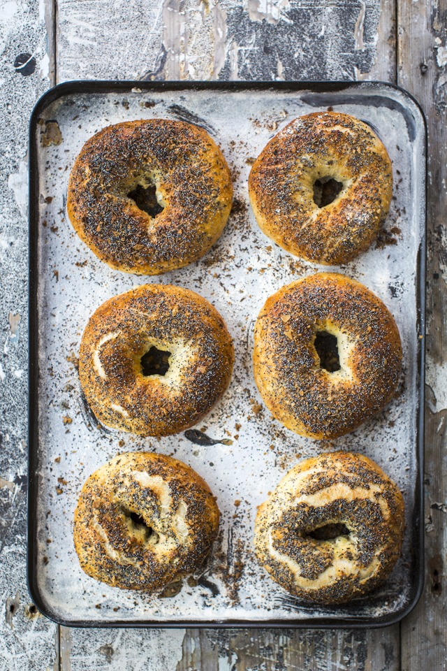 Everything Bagel | DonalSkehan.com, If you've never had a freshly made bagel, these are well worth trying!