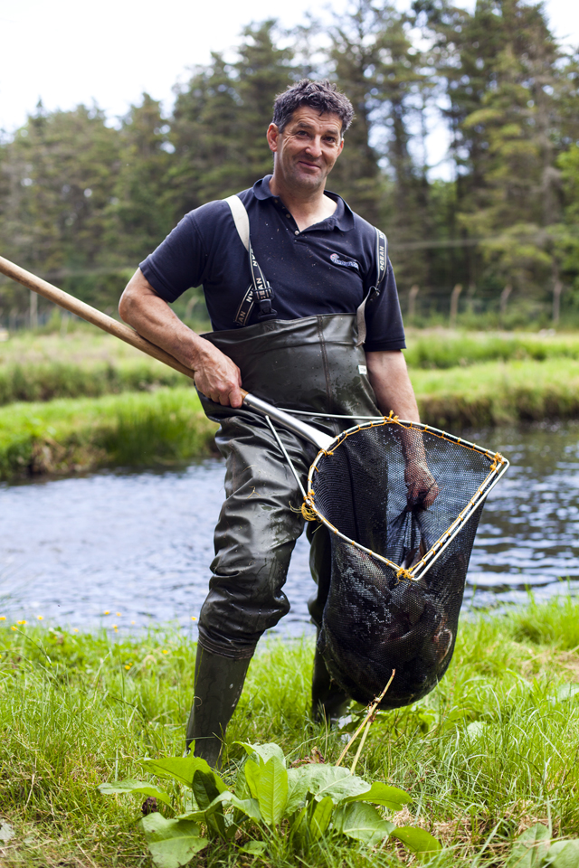 how to start a trout farm