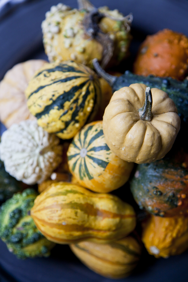 Perfect Pumpkin Recipes | DonalSkehan.com