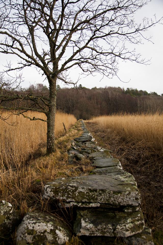 Sweden Winter 2014_11