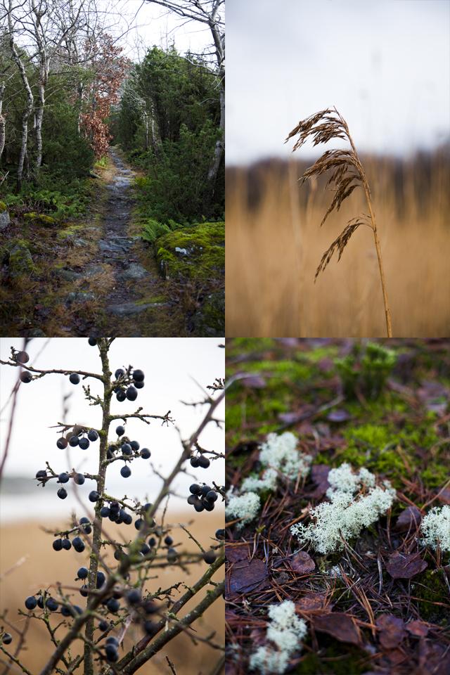 Sweden Winter 2014_19 copy2